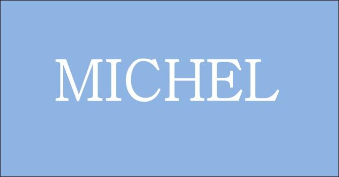 En quelle année avons-nous eu plus de Michel à la naissance ?