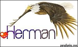 En quelle année avons-nous eu plus d'Herman à la naissance ?
