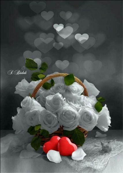 """""""C'est aujourd'hui dimanche et j'allais voir mamanJ'ai pris ces roses blanches elle les aime tantSur son petit lit blanc, là-bas elle m'attendJ'ai pris ces roses blanches, pour ma jolie maman"""" Qui fut l'interprète de cette chanson mythique ?"""