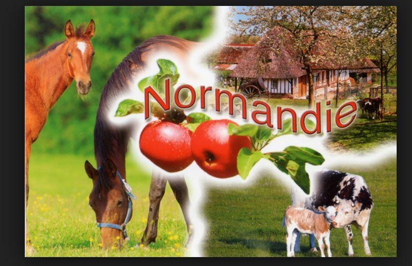 Pavillon Normand - Volet 3