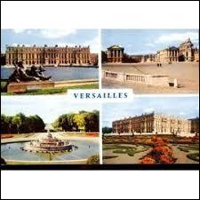 Pour voir le château de Versailles, direction le département des Yvelines.