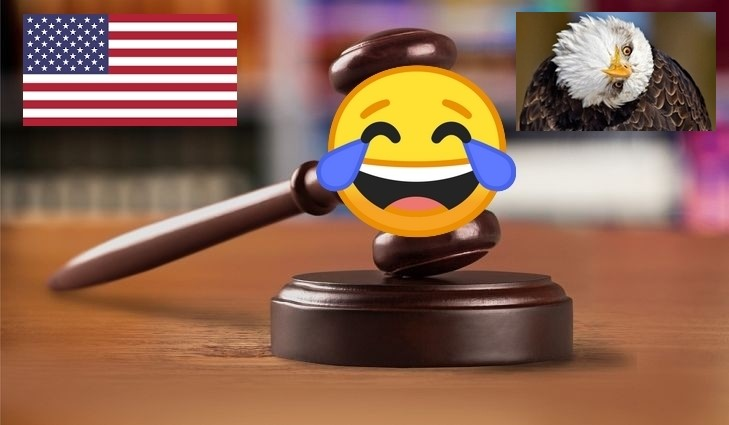 Ces drôles de lois américaines ! (1/2)