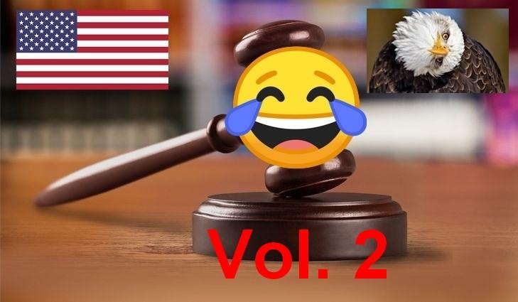 Ces drôles de lois américaines ! (2/2)