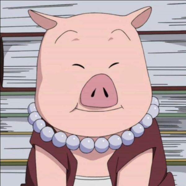 Tonton, le cochon de Shizune ! Que lui manque-t-il ?