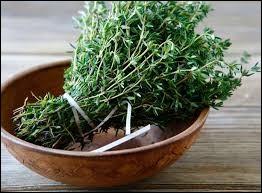 Je suis une herbe aromatique.