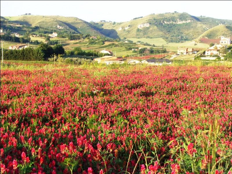 Comment se nomme le principal massif montagneux de Sicile, classé comme parc naturel et situé dans le nord-est de l'île ?