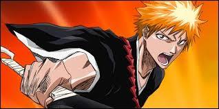 Quel est le nom du manga dans lequel apparaît ce personnage ?