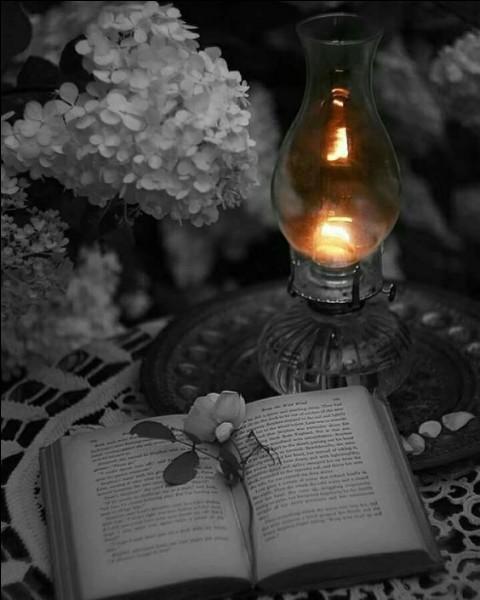 """""""Nous nous réveillons tous au même endroit du rêve. Tout commence en ce monde, et tout finit ailleurs"""" est une phrase extraite du recueil """"Les Rayons et les Ombres"""". Qui en est l'auteur ?"""