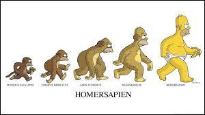 Homer Simpson adore la Duff, sa boisson préférée, de quoi s'agit-il ?
