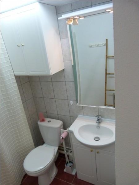 Enfin, dans les WC, quelle est la couleur du papier toilette ?