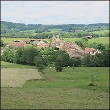 Nous sommes de nouveau dans le Grand-Est, à Grandchamp. Petit village de 70 habitants, dans l'arrondissement de Langres, il se situe dans le département ...