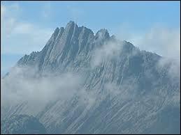 L'altitude du Puncak Jaya, le point culminant d'Océanie, est plus élevée que celle du mont Blanc.