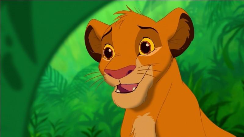 Connaissez-vous ''Le Roi lion'' ?