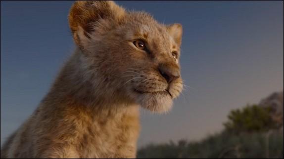 Comment s'exprime le lion ?