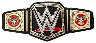 Qui est le catcheur le plus titré de la WWE ?