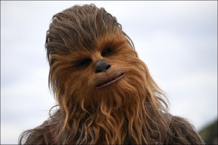 De quelle espèce est Chewbacca ?