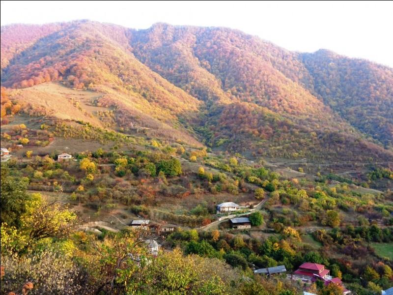Le Caucase est hélas le théâtre de nombreux conflits territoriaux. Quel pays abrite les régions séparatistes pro-russes d'Ossétie du Sud et d'Abkhazie ?