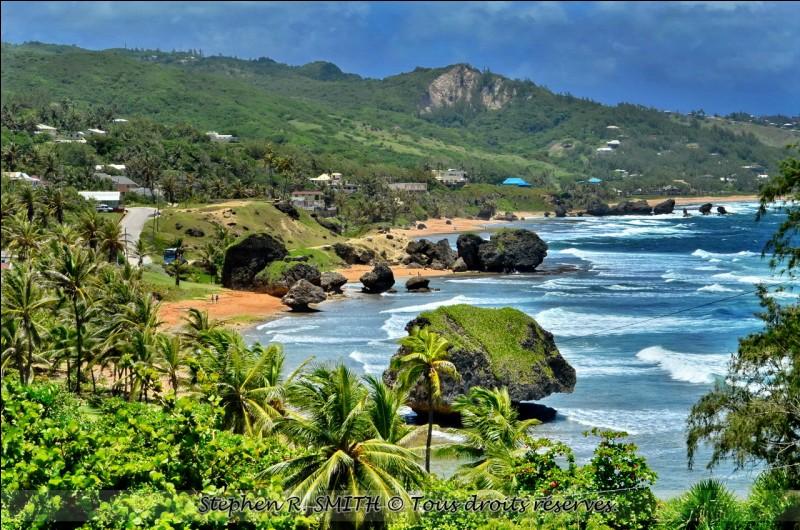 Elle se démarque parce qu'on y parle anglais : sa côte orientale que l'on voit ici, est agitée par les grands vents de l'Atlantique, c'est le paradis du surf. L'hôtellerie se trouve là où sont les belles plages, autour de Bridgetown au sud-ouest.Nommez ce micro-état au climat tropical, aux eaux magnifiques et aux plages de rêve.