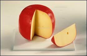 L'image représente un fromage très utilisé, comment s'appelle-t-il ?