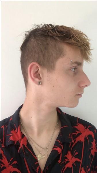 Quelle couleur de cheveux Brandon VBK n'a-t-il pas eue ?
