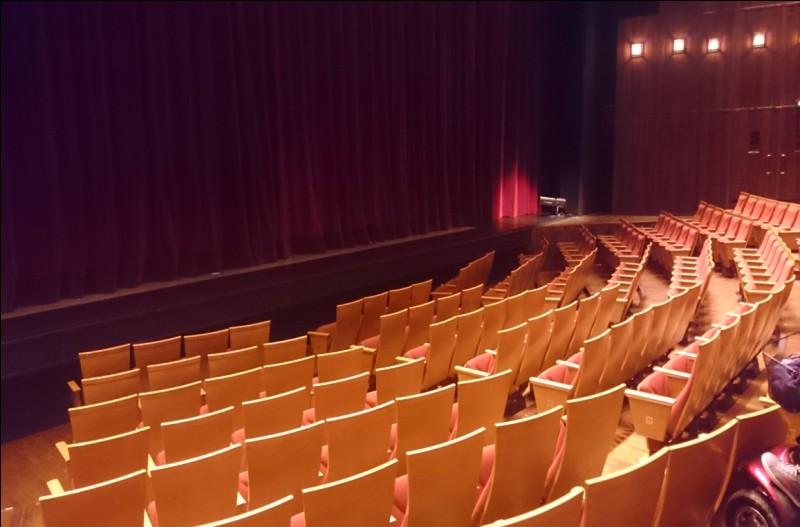 Où peut-on voir la salle de spectacle le Grand T ?