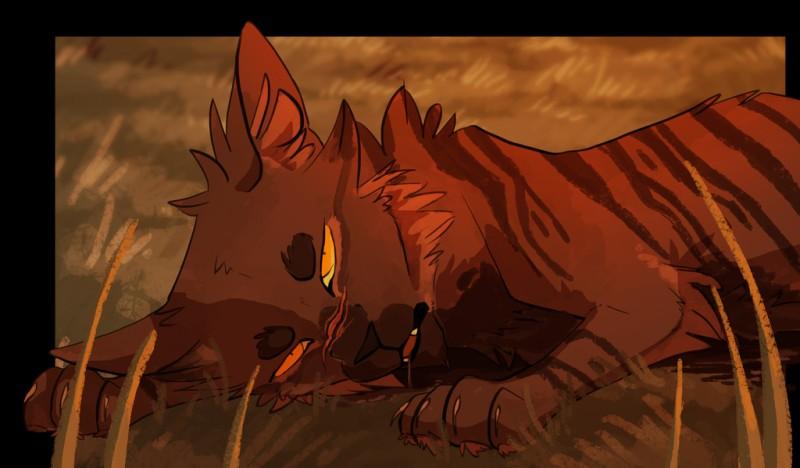 Comment meurt Étoile du Tigre ?