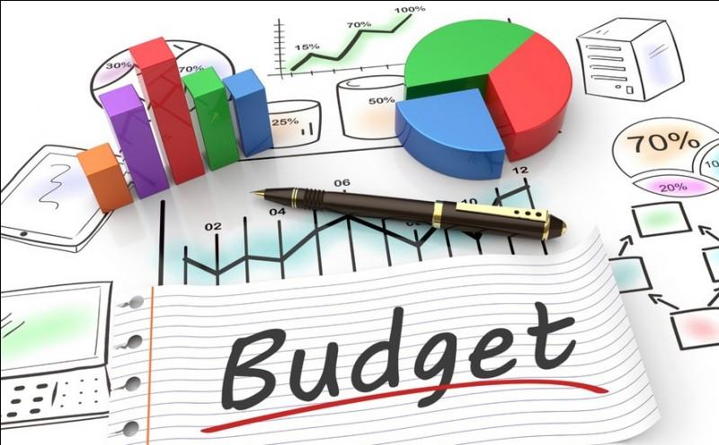 Quels sont les deux types de politique budgétaire existants ?