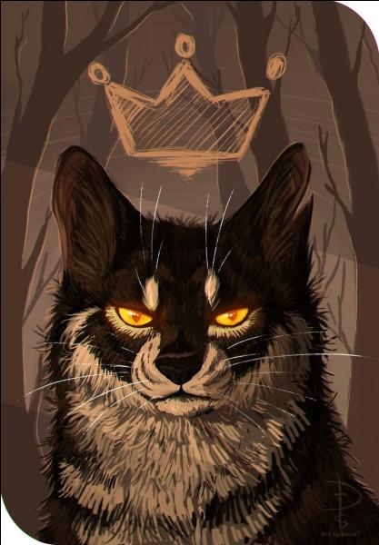 Qui a été le chef du clan de l'Ombre avant Étoile du Tigre ?