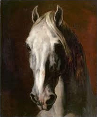 ''Tête de cheval blanc'' est une huile sur toile réalisée en 1815, et conservée au musée du Louvre. Nous montrant une tête de cheval claire, son regard est profond, surgissant d'un fond sombre. Quel romantique est l'auteur de ce tableau ?