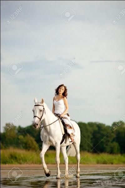 En équitation, on fait tout :
