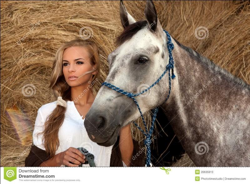 Le cheval peut reconnaître quelqu'un en photo :