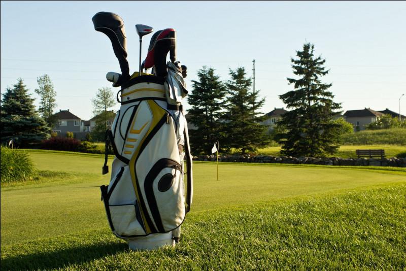 Comment s'appellent les différents clubs de golf ?