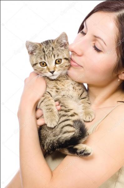 Pour donner la gougoute à son chat !