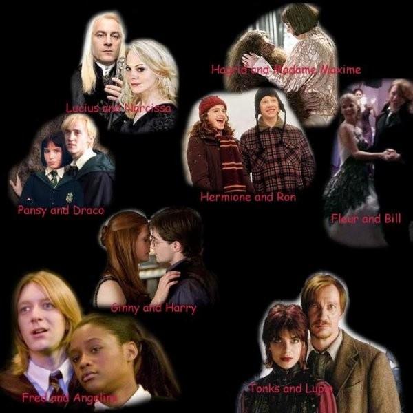 De couple ''Harry Potter'' es-tu ?