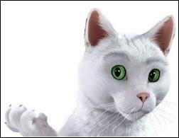 Dans quelle publicité voit-on ce chat blanc ?