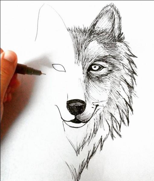 Préfères-tu dessiner ?