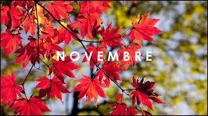 Le mois de novembre se situe en hiver.