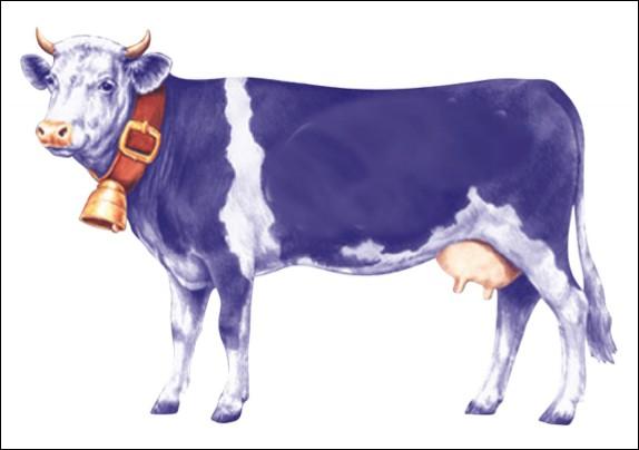 Quelle marque de chocolat utilise une vache mauve dans ses publicités ?