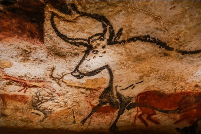 Qu'est-ce qu'un pétroglyphe ?
