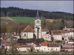 Commune du Grand-Est, Laferté-sur-Aube se situe dans le département ...