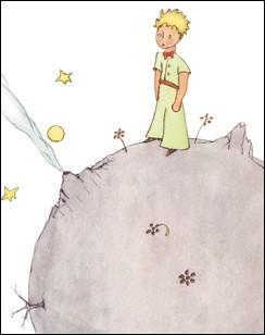 """Ce livre raconte l'histoire d'un jeune prince vivant sur une planète et qui veut découvrir le monde, c'est : """"... """""""