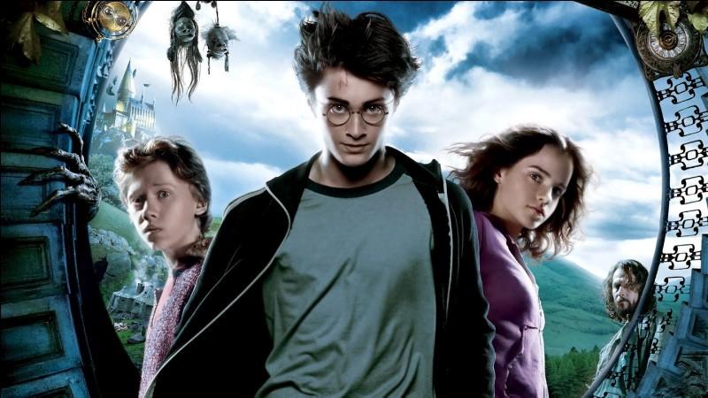 Dans la baguette de Harry il y a :