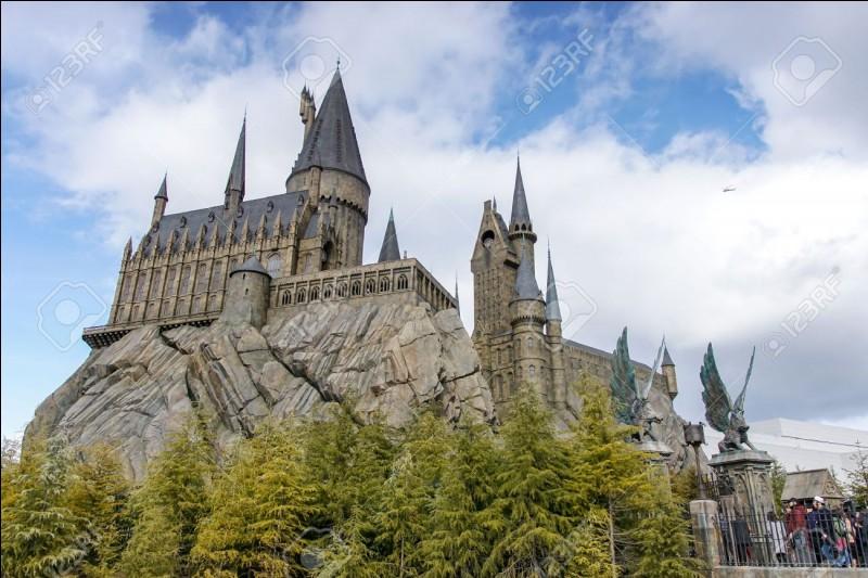 """Dans le tome 4 de Harry Potter, """"La Coupe de feu"""", Hagrid tombe amoureux d'une femme. Laquelle ?"""