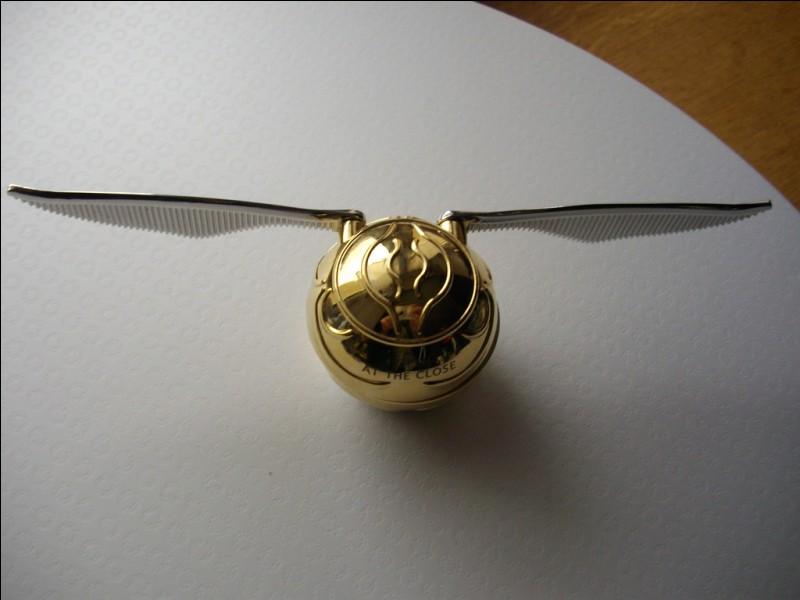 Quel objet Harry trouve-t-il dans le vif d'or que Dumbledore lui a légué ?