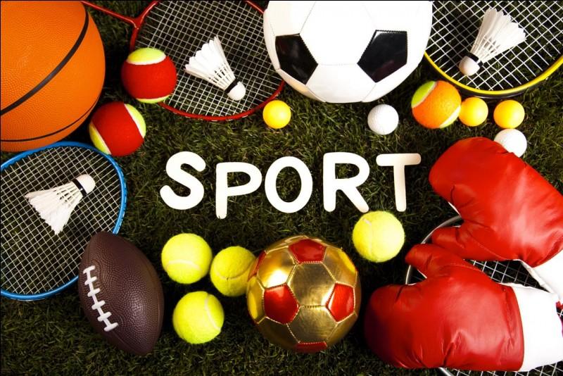 Ton sport préféré est...