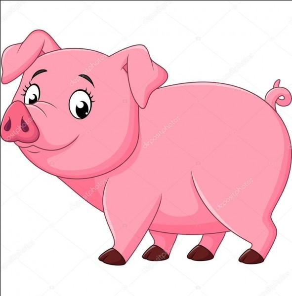 Comment appelle-t-on le jeune porc sevré ?