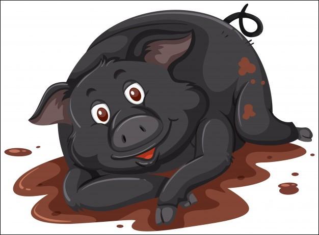 Où trouve-t-on la pata negra, spécialité culinaire obtenue par les cochons noirs ?