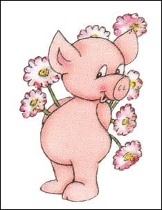 De quoi le cochon d'Inde tient-il son nom ?
