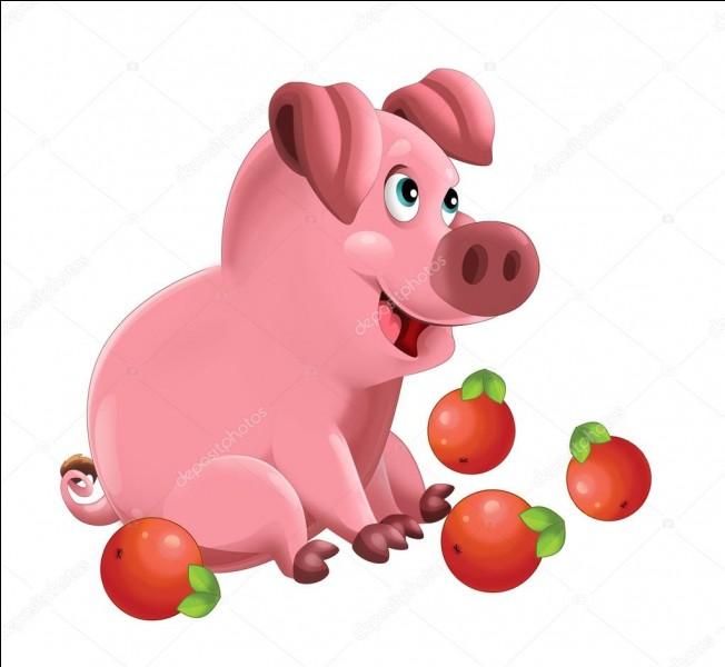 Que dit-on d'un petit cochon qui a l'art de prendre les boules sans s'énerver ?