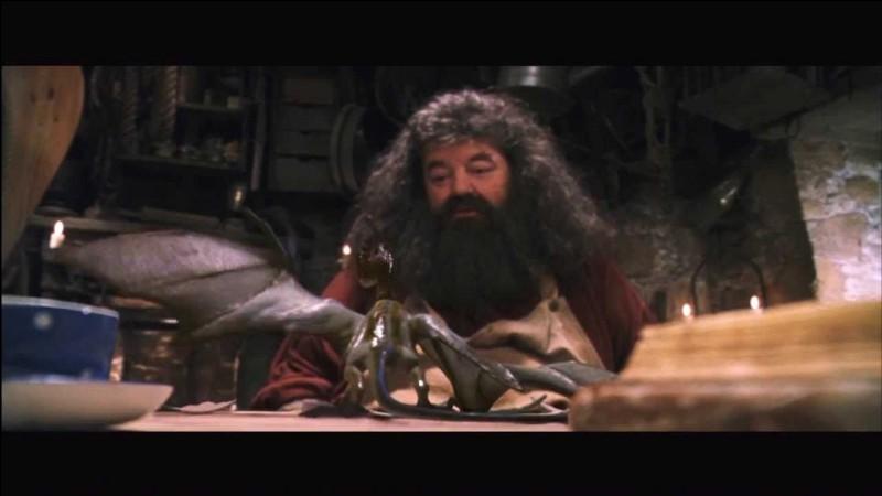 Le dragon qu'Hagrid garde un temps comme animal de compagnie s'appelle...